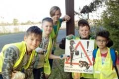 ratujemy żaby (3)